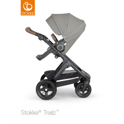 Silla de paseo  Stokke® Trailz Ruedas Todoterreno Brushed Green