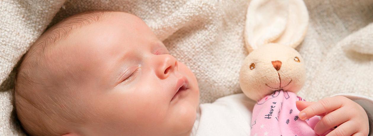 Dou dou y peluches para bebés